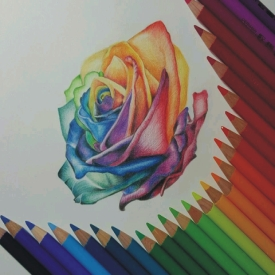 Drawing Pencils & Color Pencils